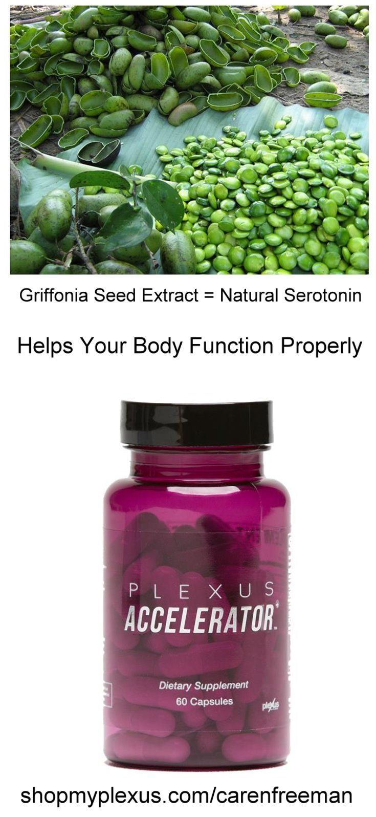 Increase your serotonin levels using Plexus Accelerator that contains Griffonia seed extract, or 5-HTP. Used in conjunction with the Plexus Tri-Plex (Slim, BioCleanse, and ProBio5), it can help your body function the way it is supposed to. Give it a try!