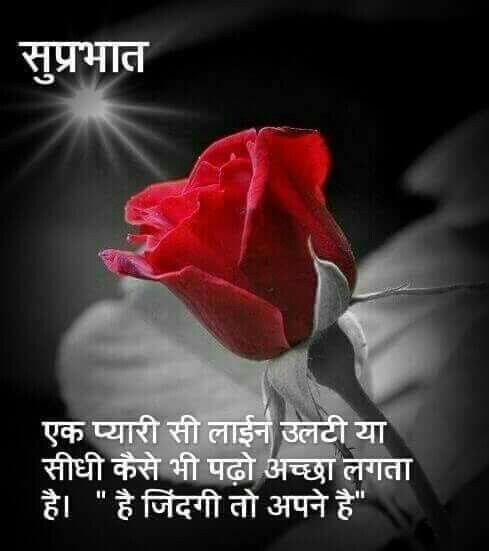 Good Morning Quotes With Pictures In Hindi: 92 Best SUPRABHAT Images On Pinterest