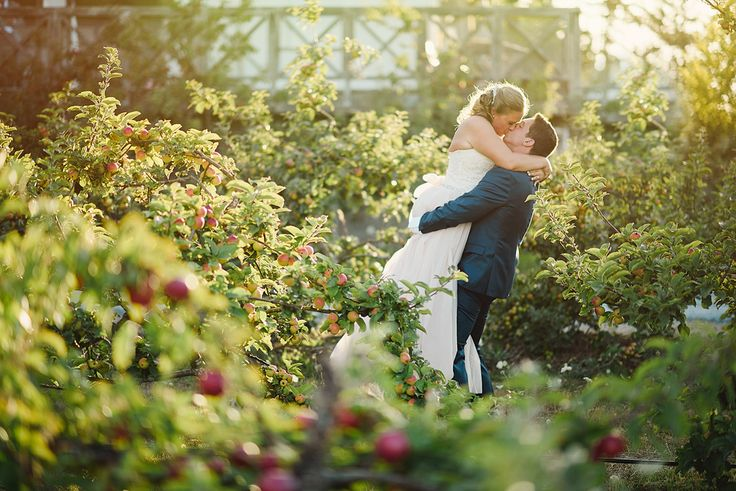 Photos in the Orchard - Erin Wallis Photography