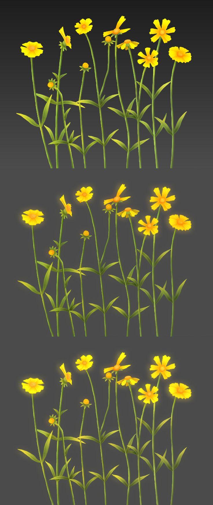 Wild flower 2017/01/05