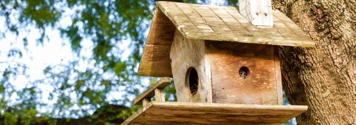 Brigg Centre Contributes to School Enterprising Project #BirdNestingBox #birds #nature #wildlife   http://jobearnshaw.co.uk/latest-news/brigg-centre-contributes-to-school-enterprising-project/