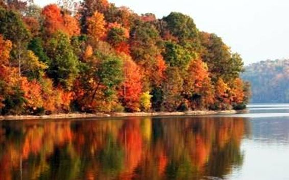 Kentucky Lake in western Ky. Great fishing, boating, Bald Eagle watching, eat at Patti's ( YUMMM), antiquing,
