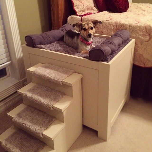 Raised Dog Bed With Steps. Finished With Killem Beige Paint.
