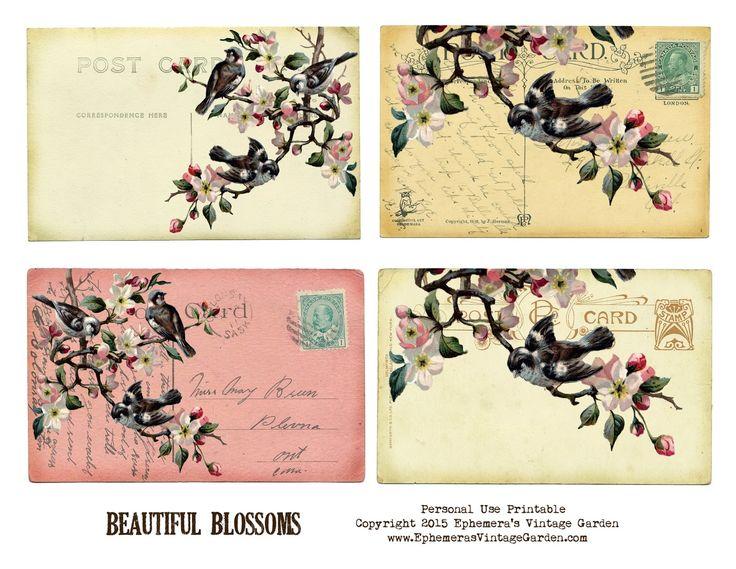 Free Victorian Fan Image Pretty The Graphics Fairy