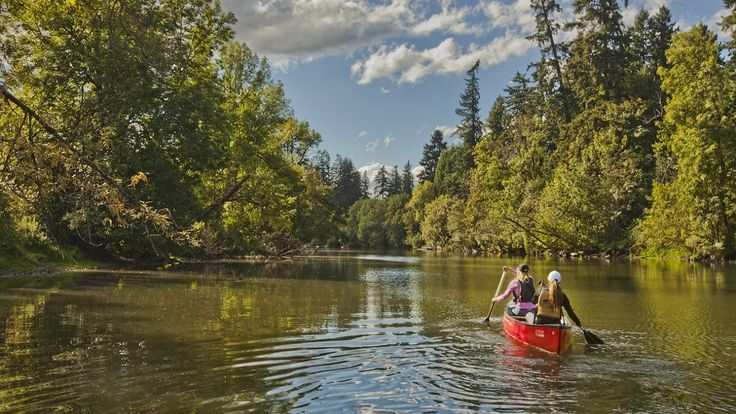 54 best images about places i 39 d like to go and soon on for Tualatin river fishing