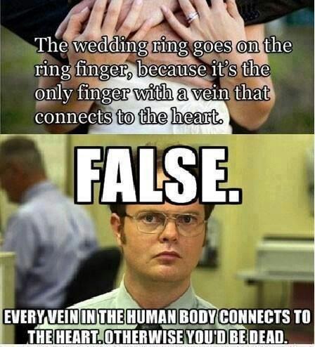 Dwight... false