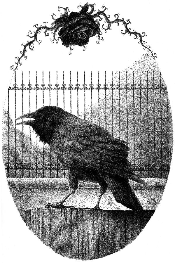 My familiar would never be a cat it is a Raven and Roses he does bring