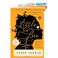 Little Bee by Chris Cleave is a great book with multicultural themes.