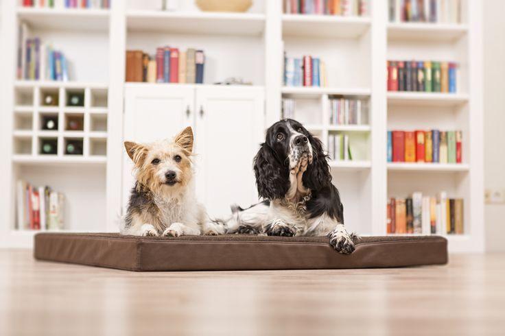 Orthopädisches Hundebett Loden von gesunde Hundebetten von Hohenstein auf DaWanda.com
