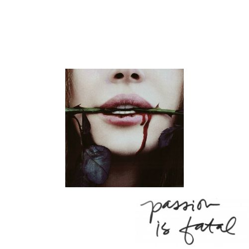 [passion is fatal - an anti valentine's day mix] hit and run - lana del rey; monster - meg myers; kill my boyfriend - natalia kills; homewrecker - marina & the diamonds; cannibal - ke$ha; i'd love to kill you - katie melua; hello - martin solveig & dragonette; happy ever after - gin wigmore; sticks and stones - the pierces; eyes on fire - blue foundation; how to be a heartbreak er - marina & the diamonds; man down - rihanna; my bloody valentine - tata young; get some - lykke li;
