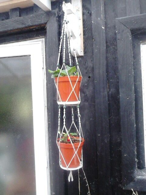 Double macrame plant hanger. It took me awhile but was worth it x