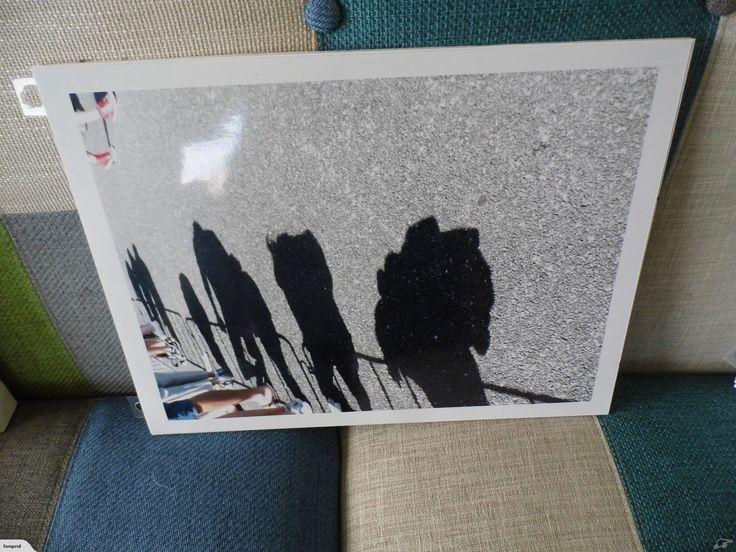 Shadow of Bystanders | Trade Me