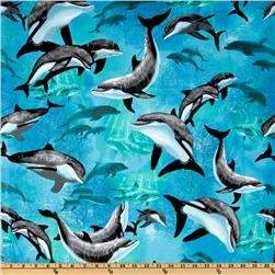 dolphin theme nursery. valance and dust ruffle.: Dolphins Aqua, Porpoise Dolphins Whale, Timeless Treasures, Life Quilt, Nautical Dolphins, Quilting Fabric, Treasures Nautical