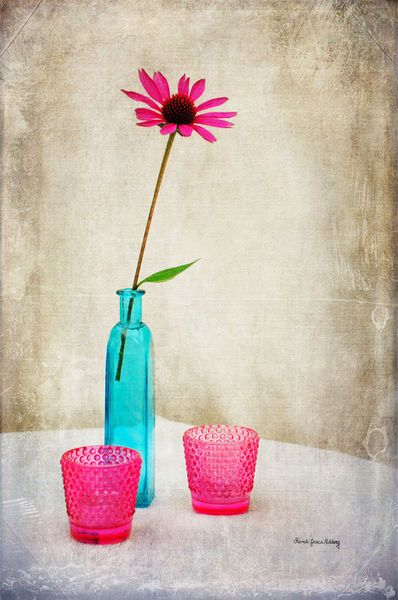 'The Coneflower' by Randi Grace Nilsberg on artflakes.com as poster or art print $19.41