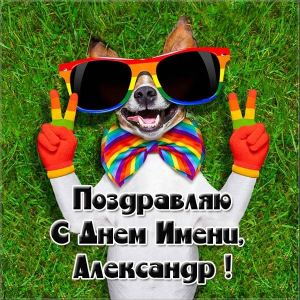 День Александра фото открытка | С днем рождения, Открытки ...