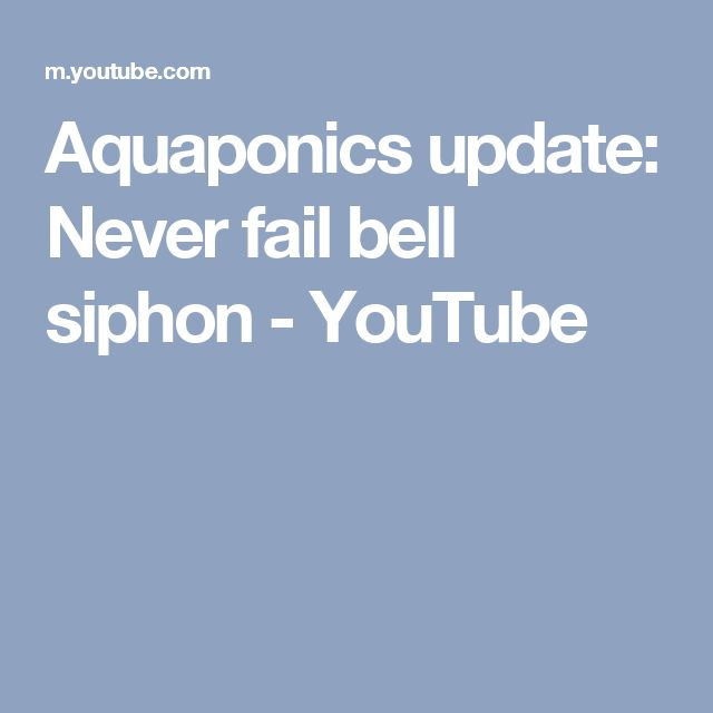 Aquaponics update: Never fail bell siphon - YouTube
