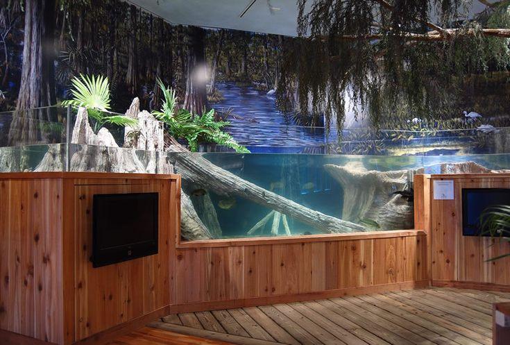 Custom fish tanks fish tank pinterest design fish for Custom made fish tanks
