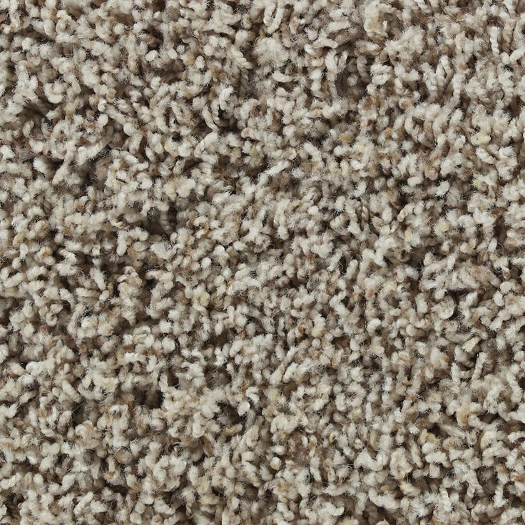 Stainmaster active family carefree ellington frieze indoor for Stainmaster carpet