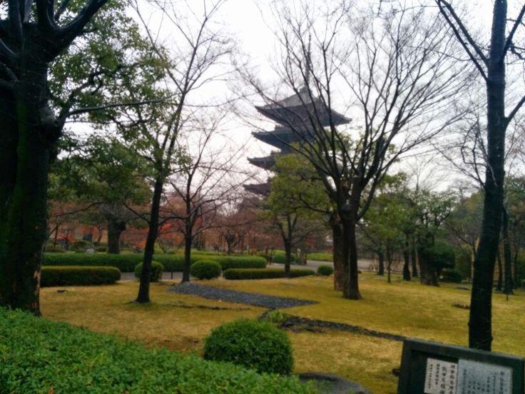 Kyoto t