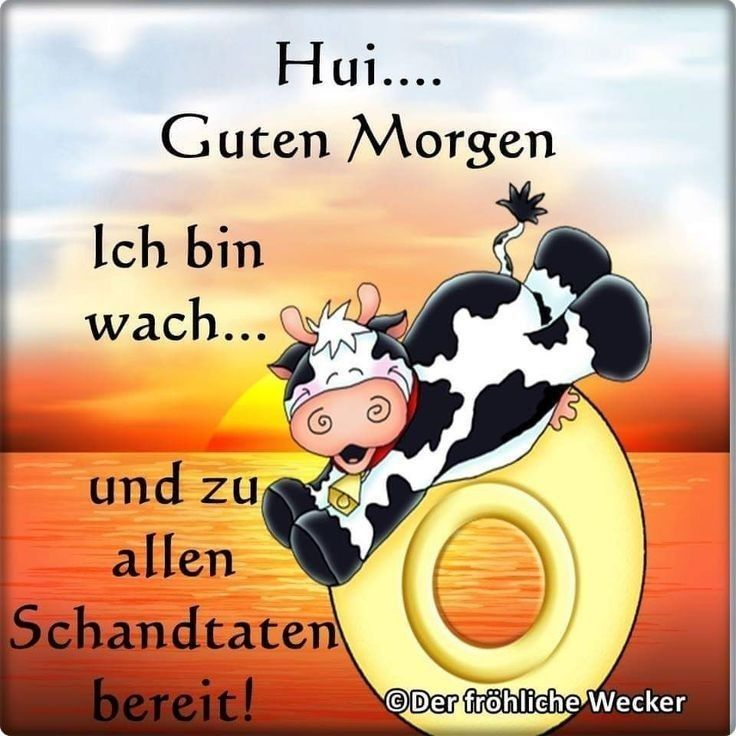 Pin Von Monica Auf Amuzant Guten Morgen Lustig Guten Morgen