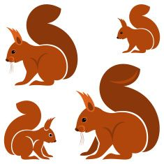Squirrel vector art illustration