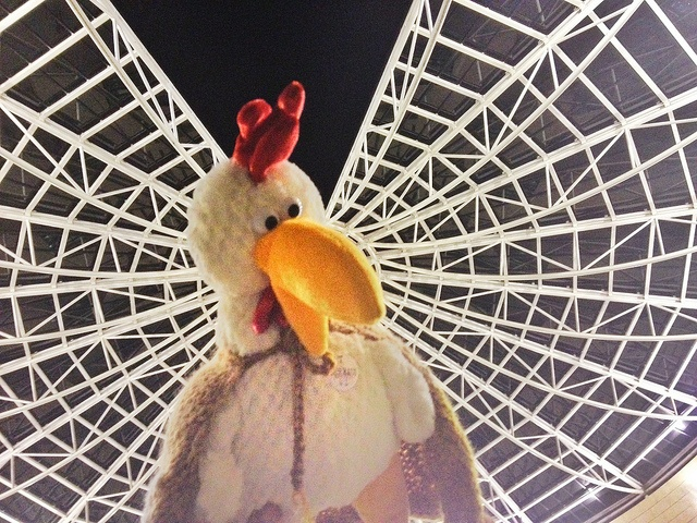 Chick by Chick, via Flickr