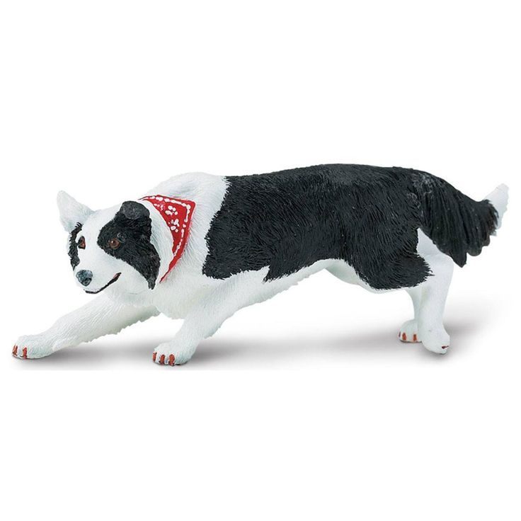 This is a Border Collie Best In Show Dogs Figure that is produced by Safari Ltd. It's pretty awesome! Kids and animal enthusiasts love the figures that are produced by Safari, because of their great d