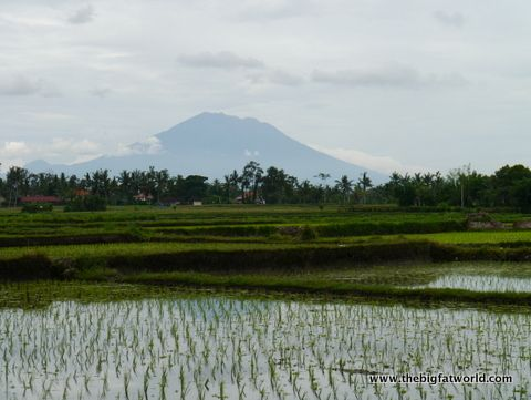 181 Top 10 Things to do In Bali, Indonesia