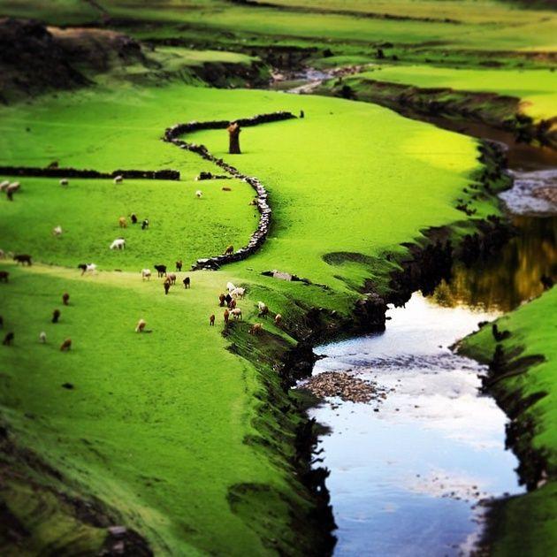 #Galicia Nature