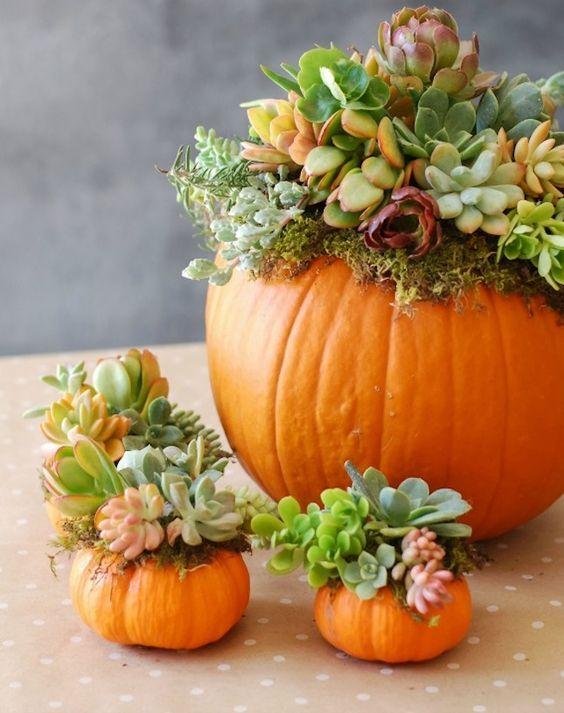 Assez des mariages d'été qui se ressemblent! On est fans des mariages d'automne et de leurs thématiques chaleureuses et originales