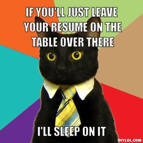 1000  images about resume memes on pinterest