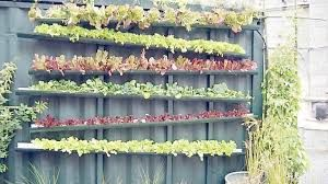 Bilderesultat for vertikale hager