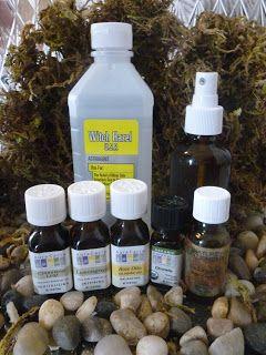 natural essental oil bug spray and all natural mold killer prevention. Black Bedroom Furniture Sets. Home Design Ideas