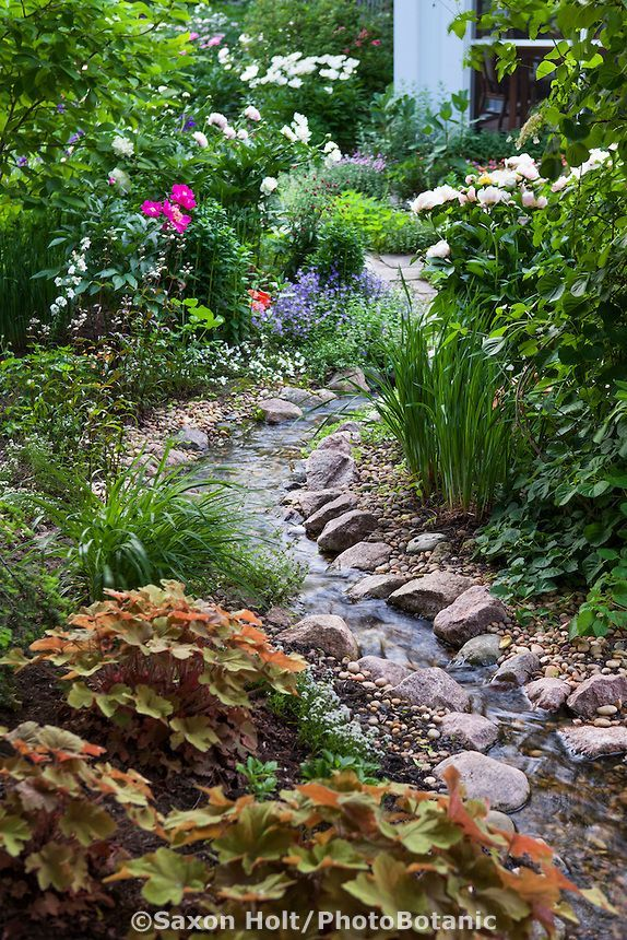 Stream running through backyard garden  http://surreylawns.co.uk