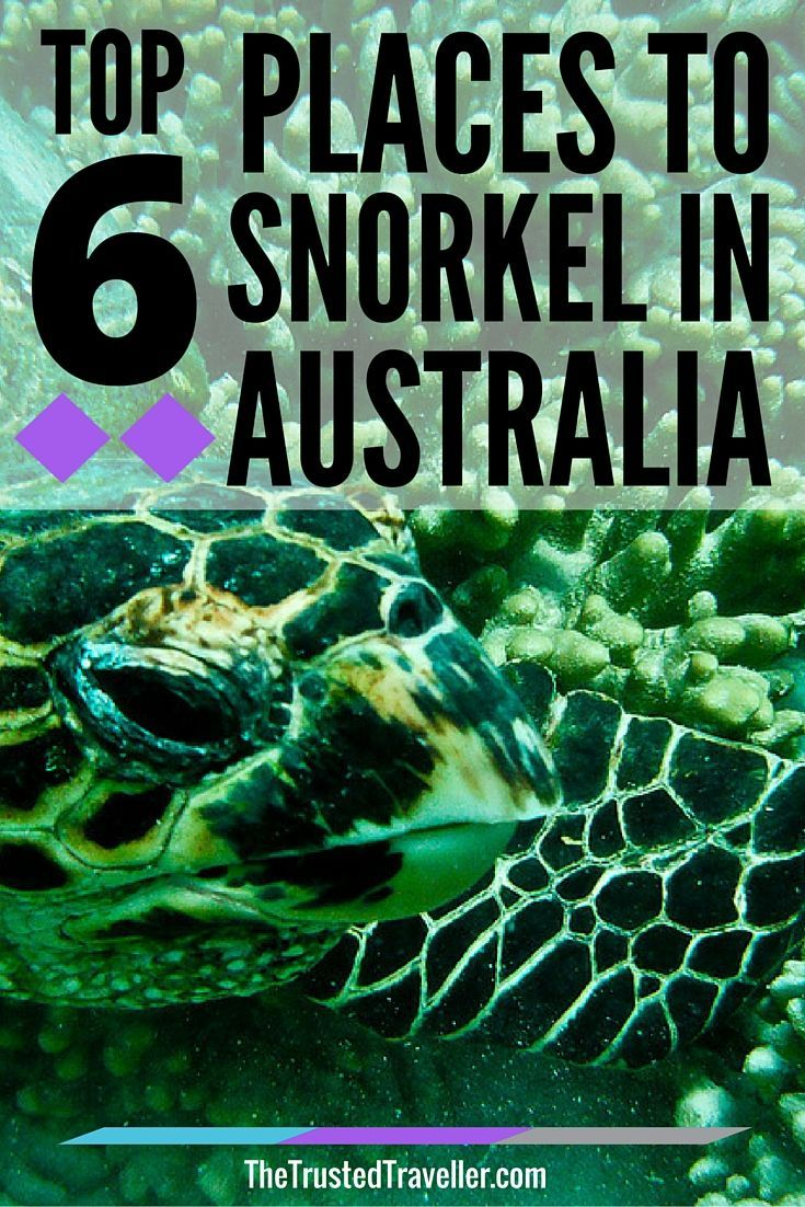 Australia is surrounded by aquatic sanctuaries teeming with marine life. Here are the top 6 places to snorkel in Australia.