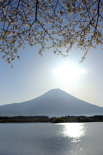 Mt.Fuji after the sunrise