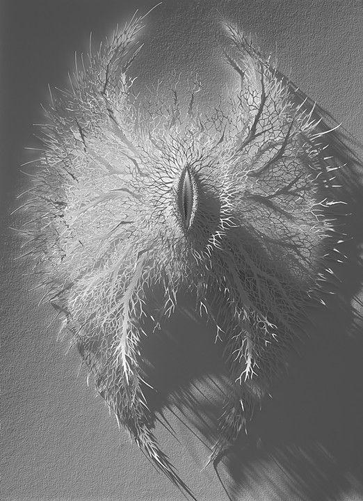 Fallen Angel Wings 2014 Hand cut paper, 73x54x7cms by Rogan Brown