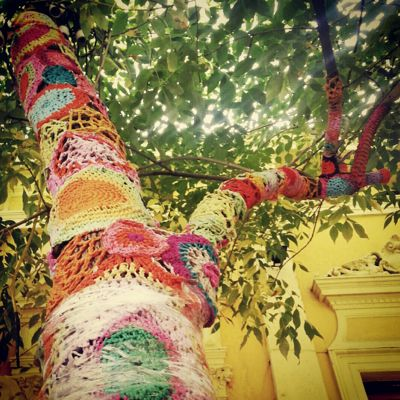 Tree Yarn bombing in Buenos Aires, Argentina