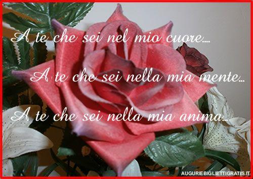 rosa rossa con dedica