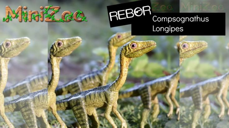 Rebor Compsognathus Unboxing on YouTube | MiniZoo Reviews
