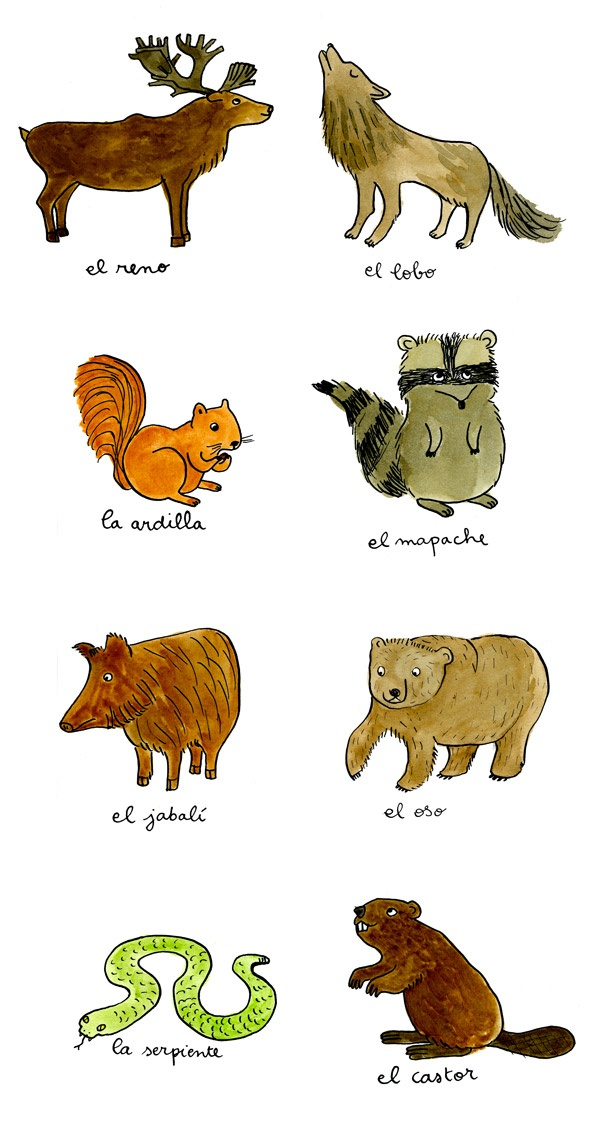 Great way to learn Spanish. Animales salvajes.