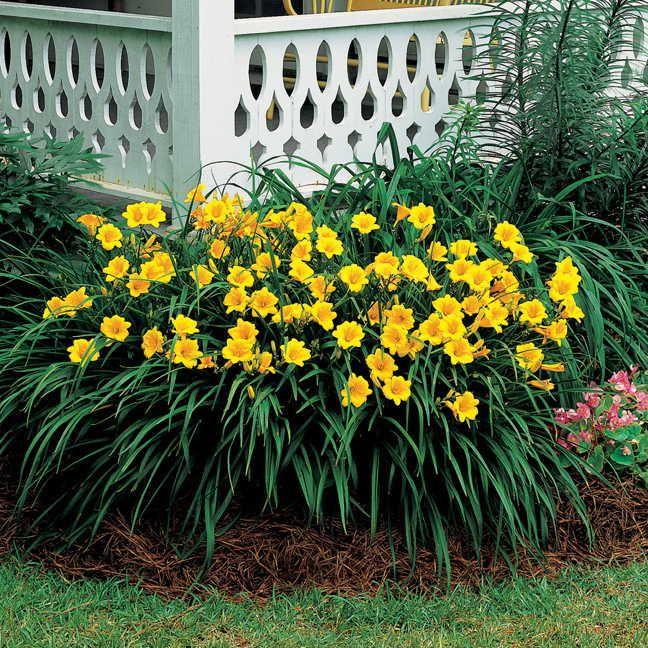 118 besten Garten m Bilder auf Pinterest Gartenideen, Gärtnern - garten und landschaftsbau bilder
