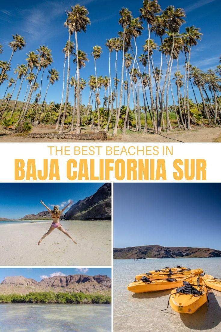 baja beaches the best sun spots near la paz and todos santos rh pinterest com