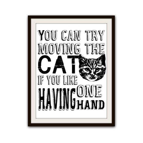Funny Cat Lover Typography Poster Home Decor