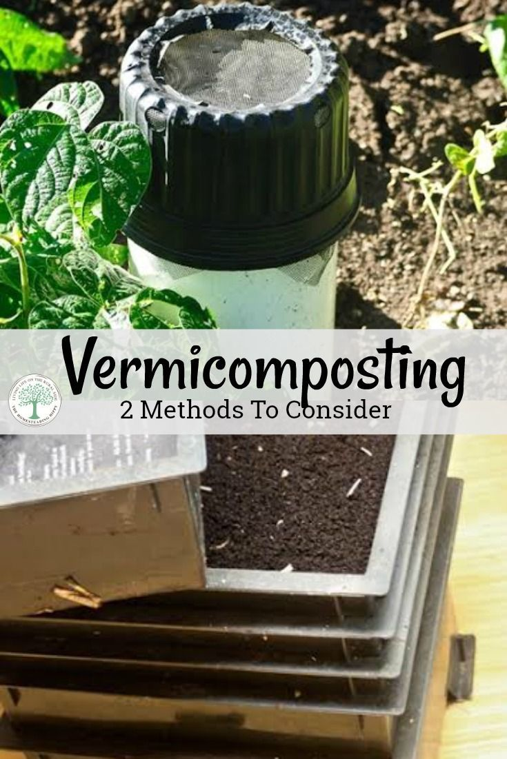 Are you wanting to get a better garden? Try vermicomposting and get added nutrients into your soil! We'll discuss to easy to start methods! The Homesteading Hippy via @homesteadhippy