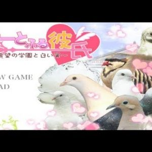 Pigeon dating sim Hatoful Boyfriend delayed to September -  Sorry lovebirds, but the pigeon of your dreams won't land until September. Hatoful Boyfriend, the world's finest (and, as far as we know, only) pigeon dating simulator has been