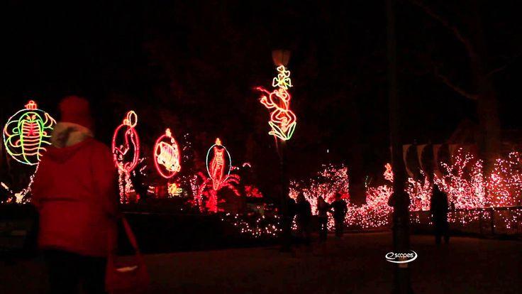 eScapes TV - Toledo Zoo Lights Before Christmas
