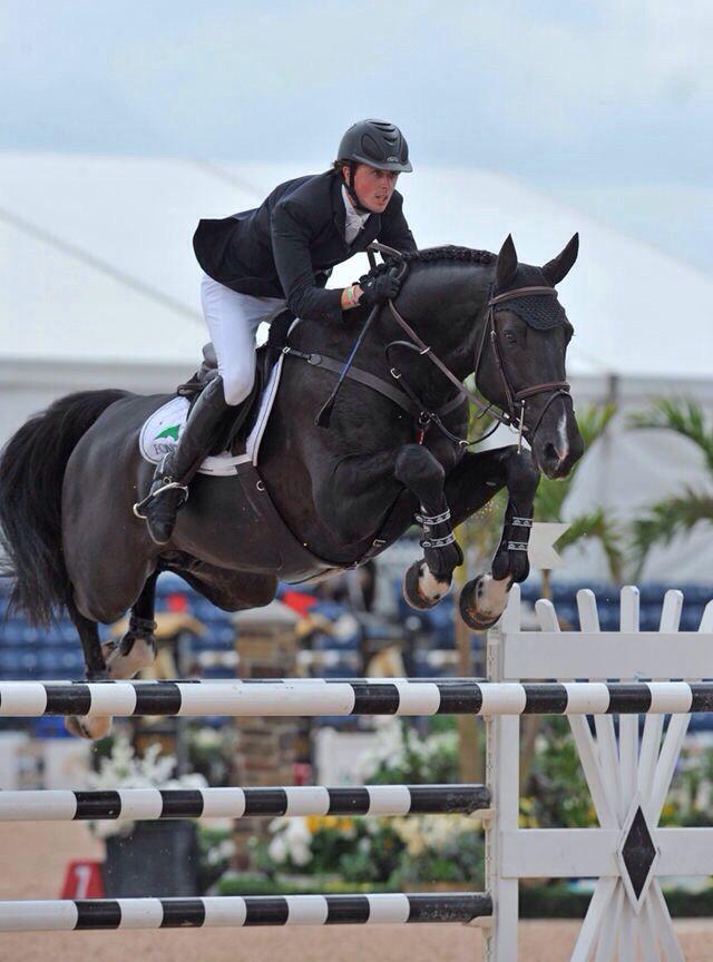 Equestrian: Jumping ~ Triple X III