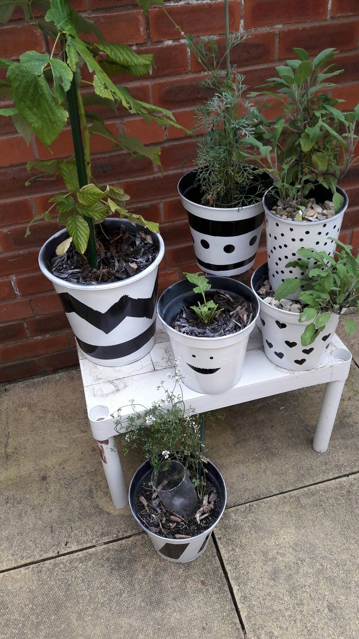 Painted flowerpots: black plastic pots from Wilko plus white spray paint, stickers, masking tape and electrical tape,  finished with spray varnish.