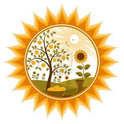 ➳➳➳☮American Hippie Art - Sunflower Mandala
